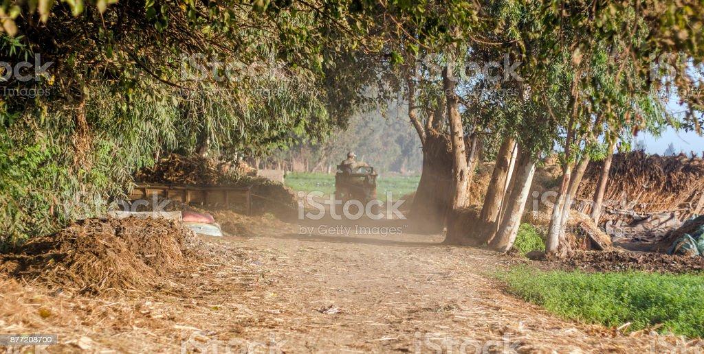 Egyptian Countryside stock photo