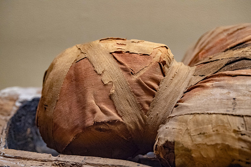 Egyptian mummy head close up detail of