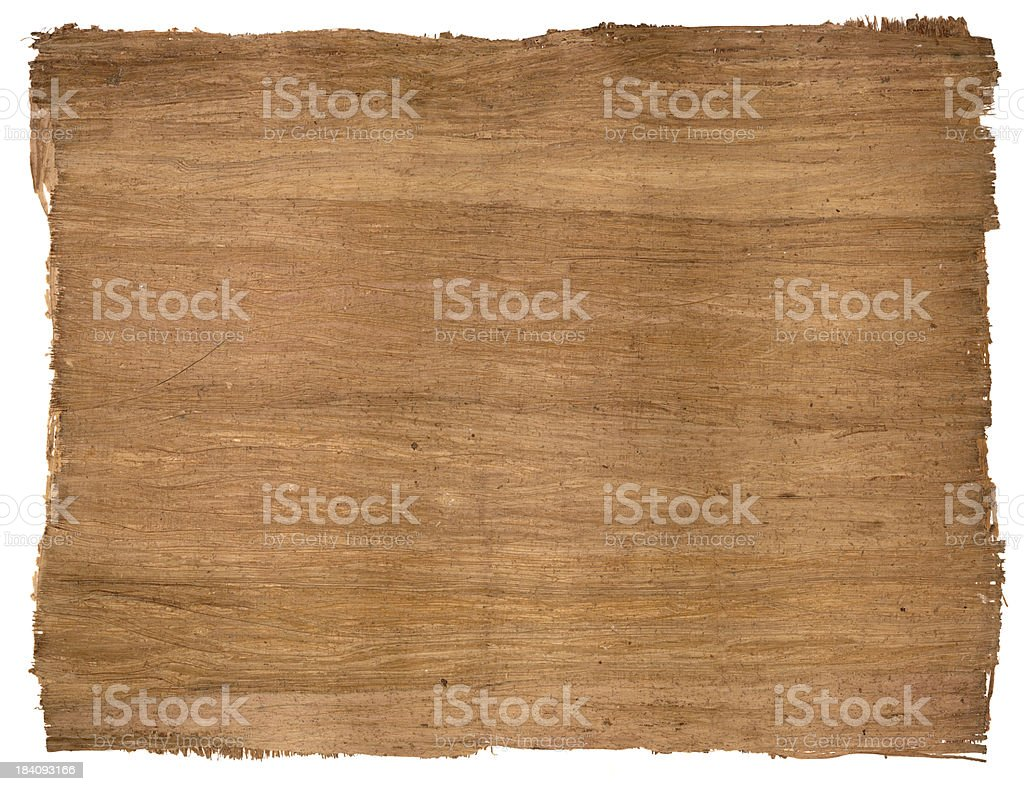 egyptian papyrus stock photo