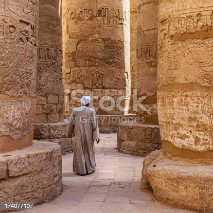 istock Egyptian temple guard in Karnak Complex, Luxor, Egypt 174077107
