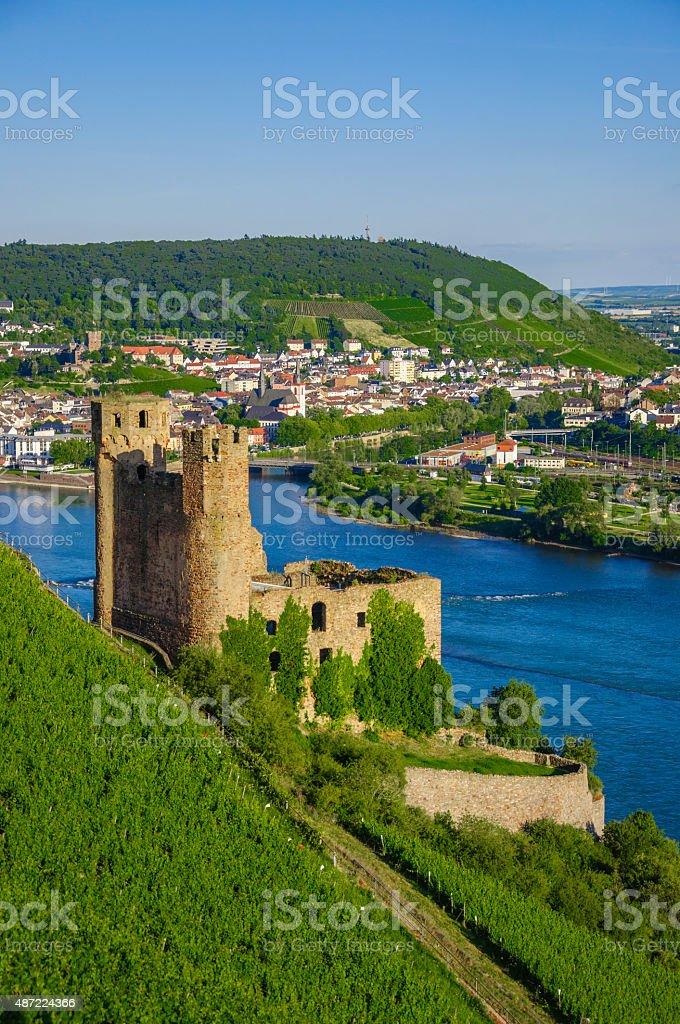 Ehrenfels Castle on Rhine river near Ruedesheim stock photo