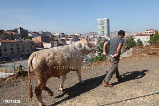 istock Eid-al-Adha in Turkey. 458534925