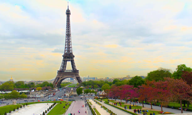 eifel tower - eiffel tower stock photos and pictures
