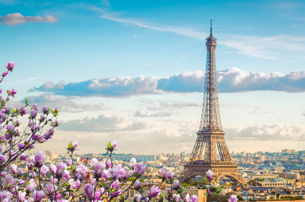 eiffel tour and paris cityscape - eiffel tower stock photos and pictures