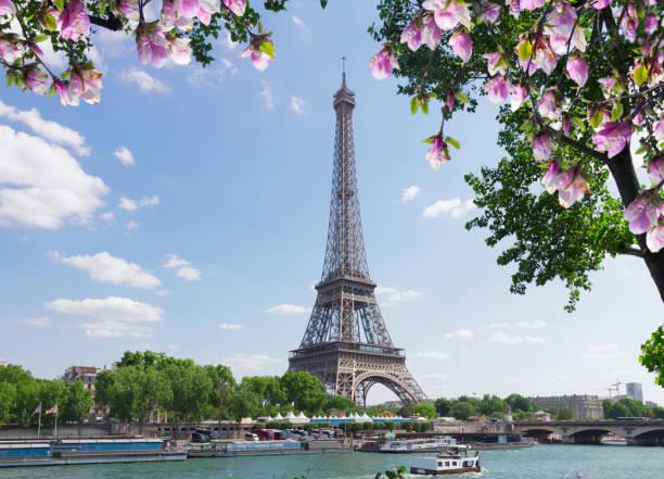 eiffel-tour über seine - paris sommer stock-fotos und bilder