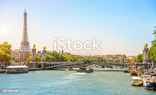 Eiffel Tower and Bridge Alexandre III over Seine River, Paris