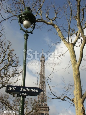 istock Eiffel tower and sign in Champ de Mars (Paris) 139716139