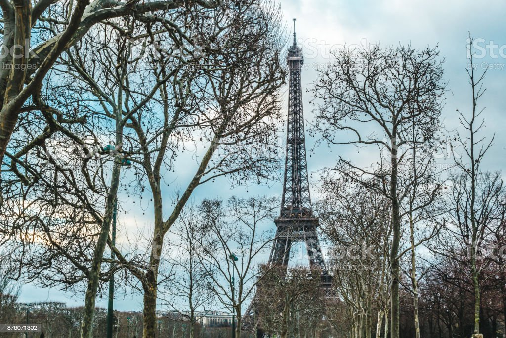 Eiffel Tower and Trees in Paris, France stock photo
