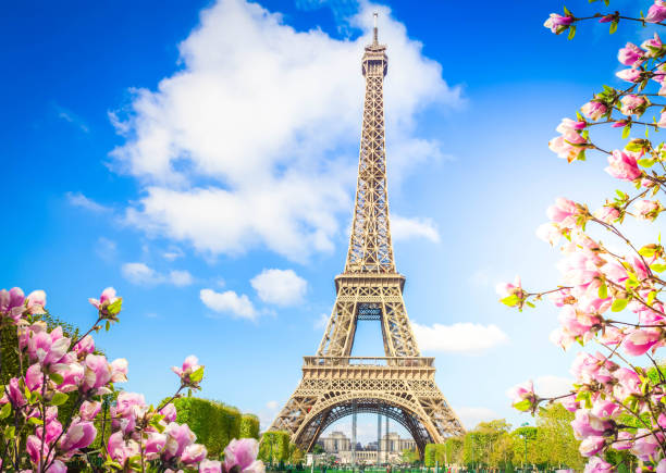 eiffel tower, France stock photo