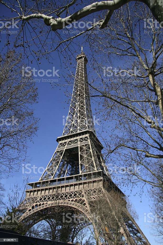 eiffel tower, hide by tree, in paris stock photo
