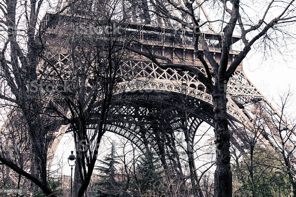 Eiffel tower in Paris, France in between trees - horizontal stock photo