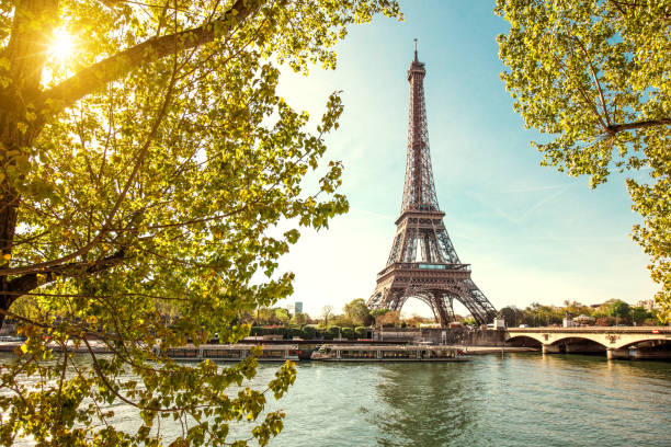eiffel tower in paris, france - eiffel tower stock photos and pictures