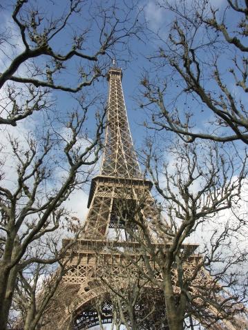 istock Eiffel tower in Paris 139737026