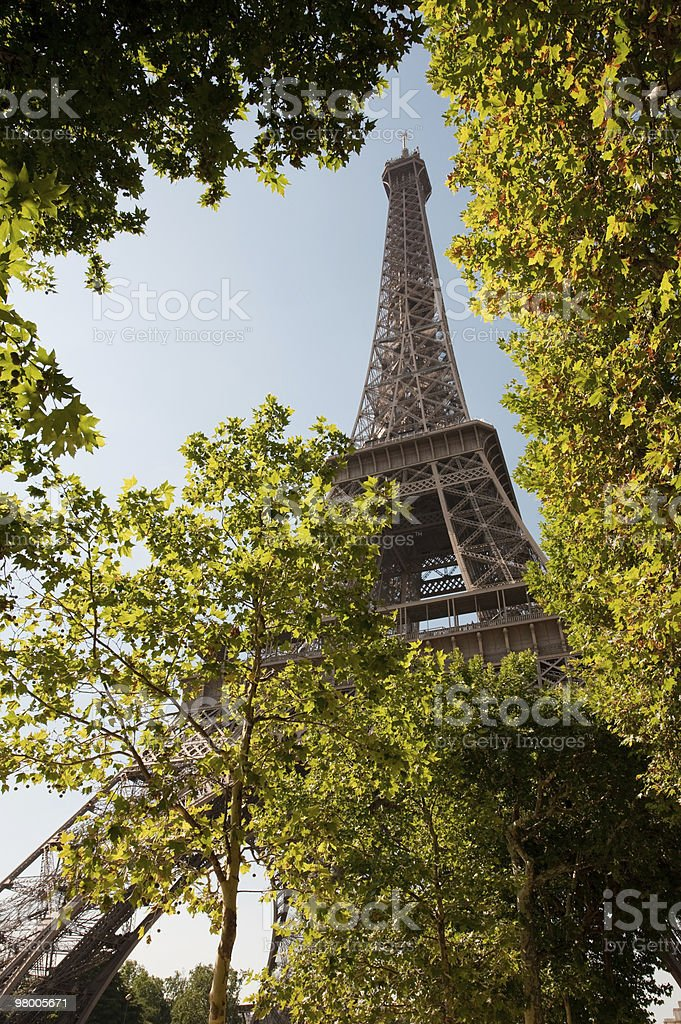 Eiffel tower in Paris royalty free stockfoto