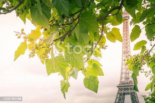 Beautiful spring day in Paris