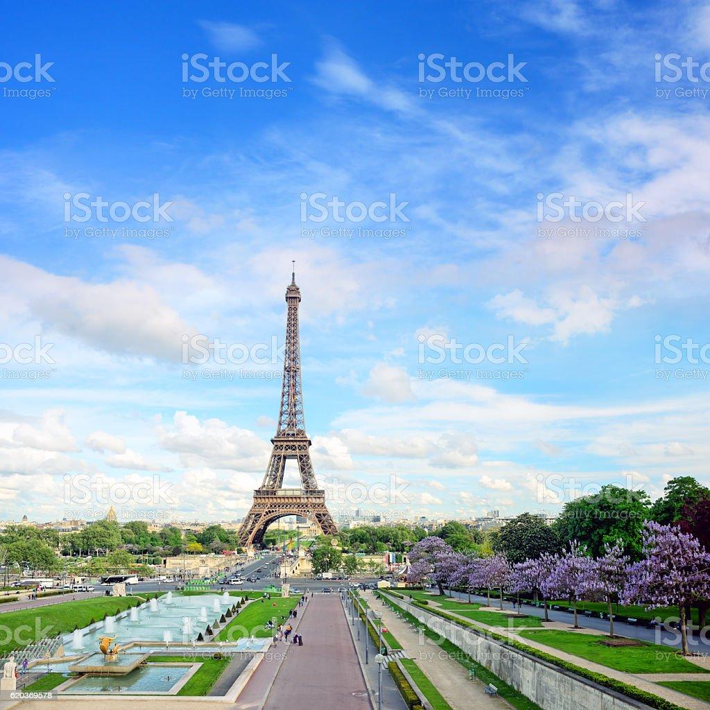 Wieża Eiffla, Paryż zbiór zdjęć royalty-free