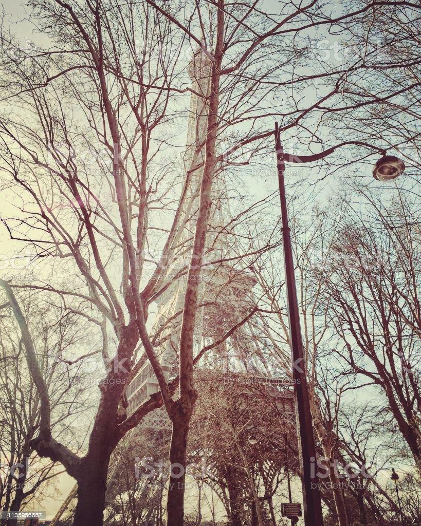Eiffelturm durch die Bäume in Paris – Foto