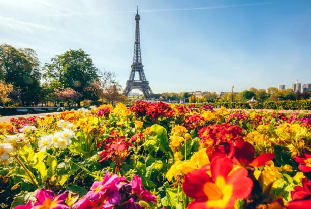 eiffelturm mit blumen in paris, frankreich - paris sommer stock-fotos und bilder