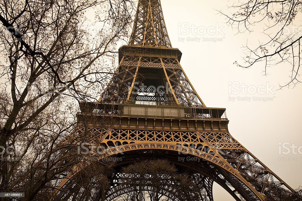 Eiffel tower with trees stock photo