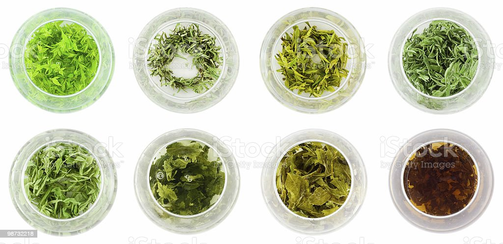 Eight bowls of green tea royalty-free stock photo