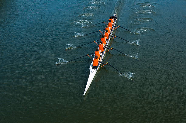 eight man rowing team - teamwork - sports team stock photos and pictures