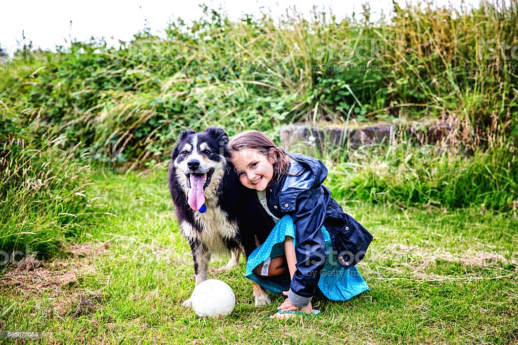 Eight year old girl with border collie royalty-free stock photo