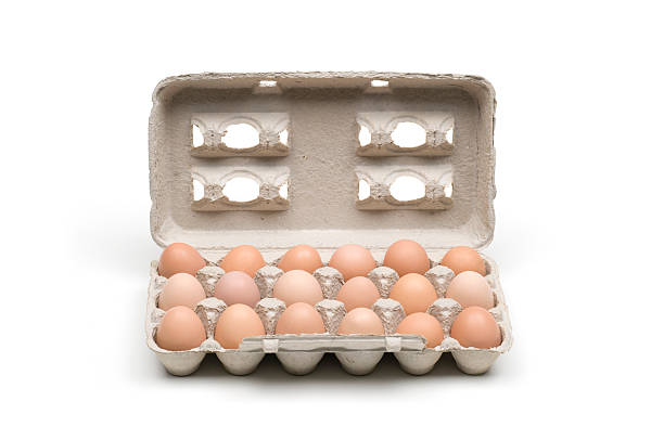 eighteen brown eggs in a carton - number 18 stock photos and pictures