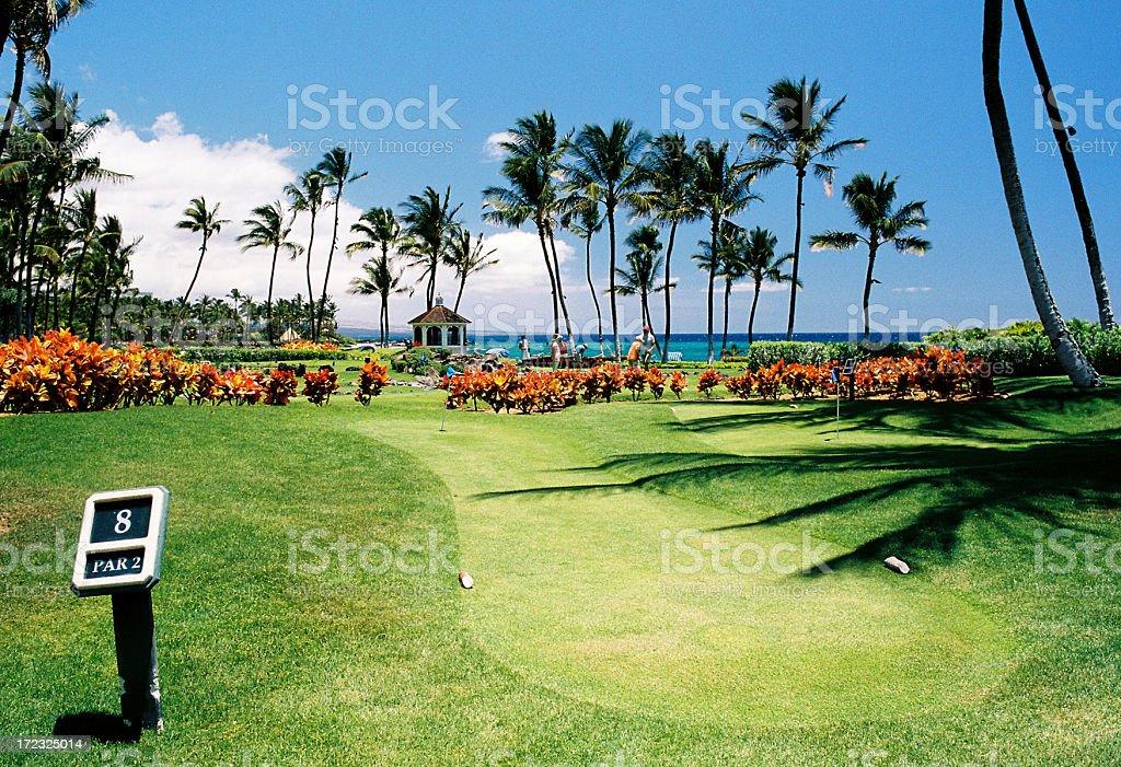 Eighth hole on Hawaii style hotel golf course stock photo