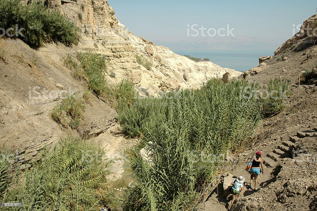 Ein Gedi National Reserve stock photo
