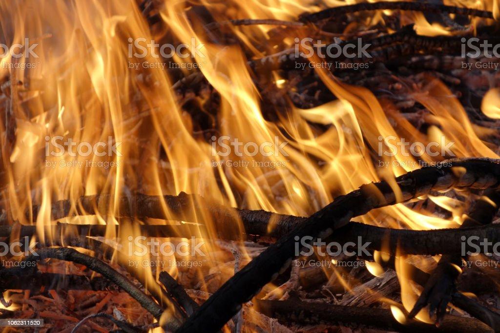 Ein wärmendes Lagerfeuer stock photo