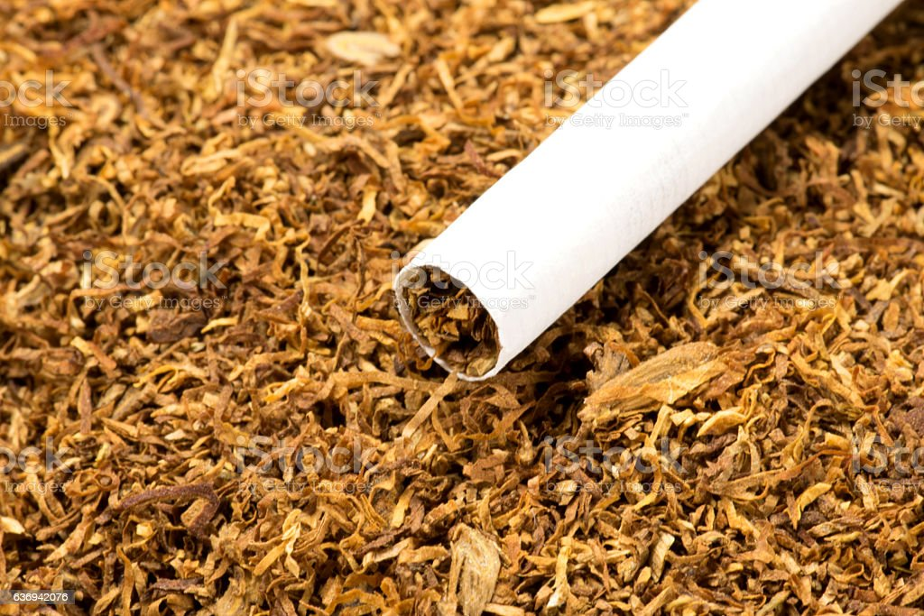 Eine Zigarette und Tabak stock photo