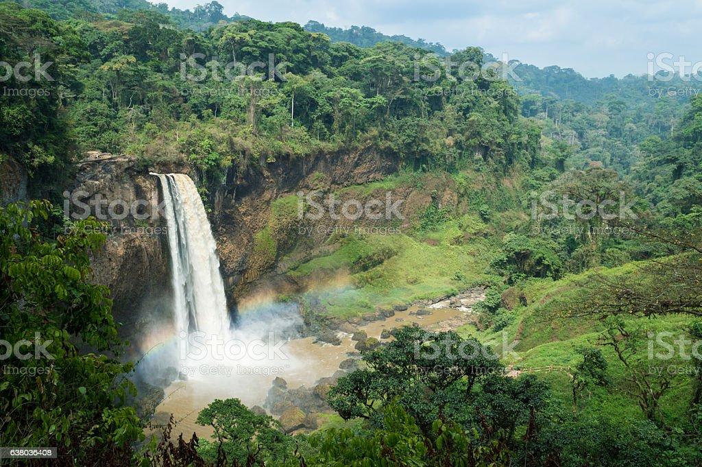 Ekom-Nkam Waterfalls in the rainforest, Melong, Cameroon, western Africa. stock photo