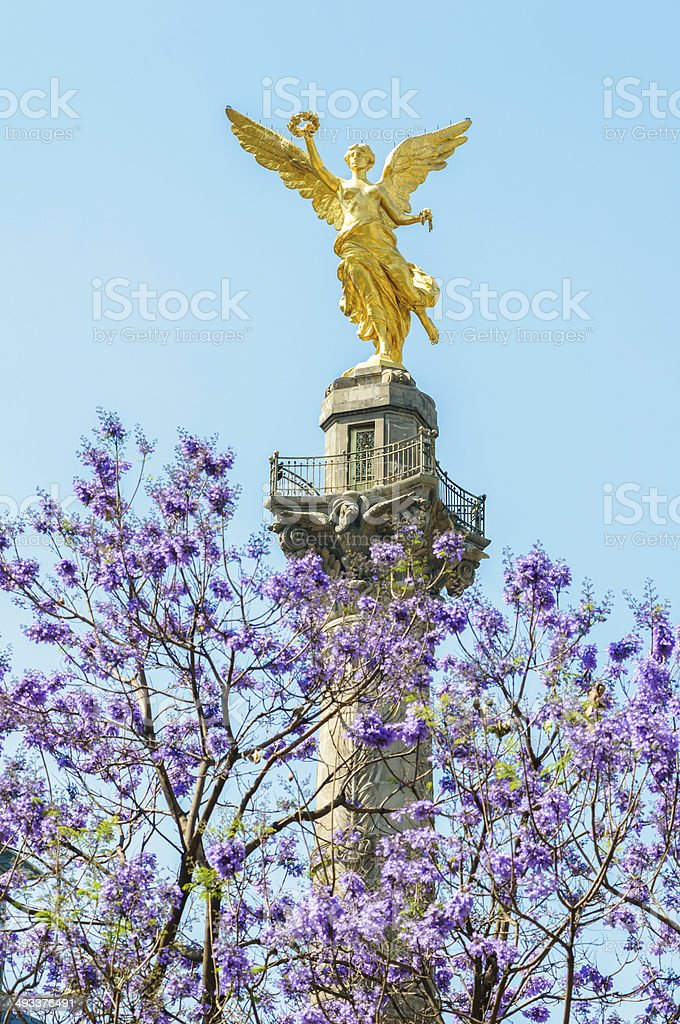 El Angel Independence monument of Mexico with jacaranda stock photo