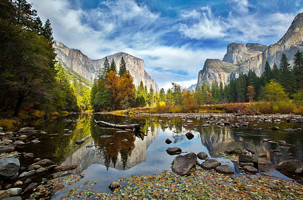 El Capitan and Merced River in the Autumn El Capitan and Merced River in the Autumn, Yosemite National Park. el capitan yosemite national park stock pictures, royalty-free photos & images