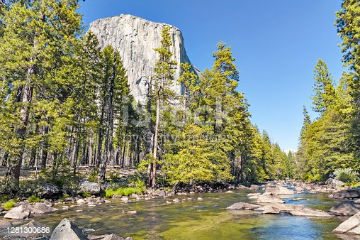 This view of Yosemite National Park Includes a look at El Capitan from below and the Merced River passing along with a lot of rocks in the river all this with a beautiful forest of trees and all of this forms a postcard view of this  great Park.