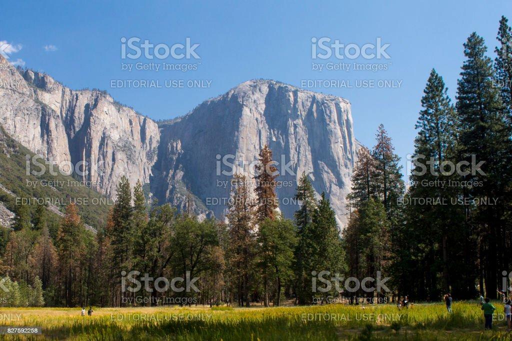 El Capitan in Yosemite National Park, CA stock photo