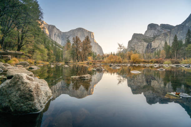 El Capitan reflection on river at Yosemite national park, USA in Autumn with yellow and orange leaves floating on water surface stock photo