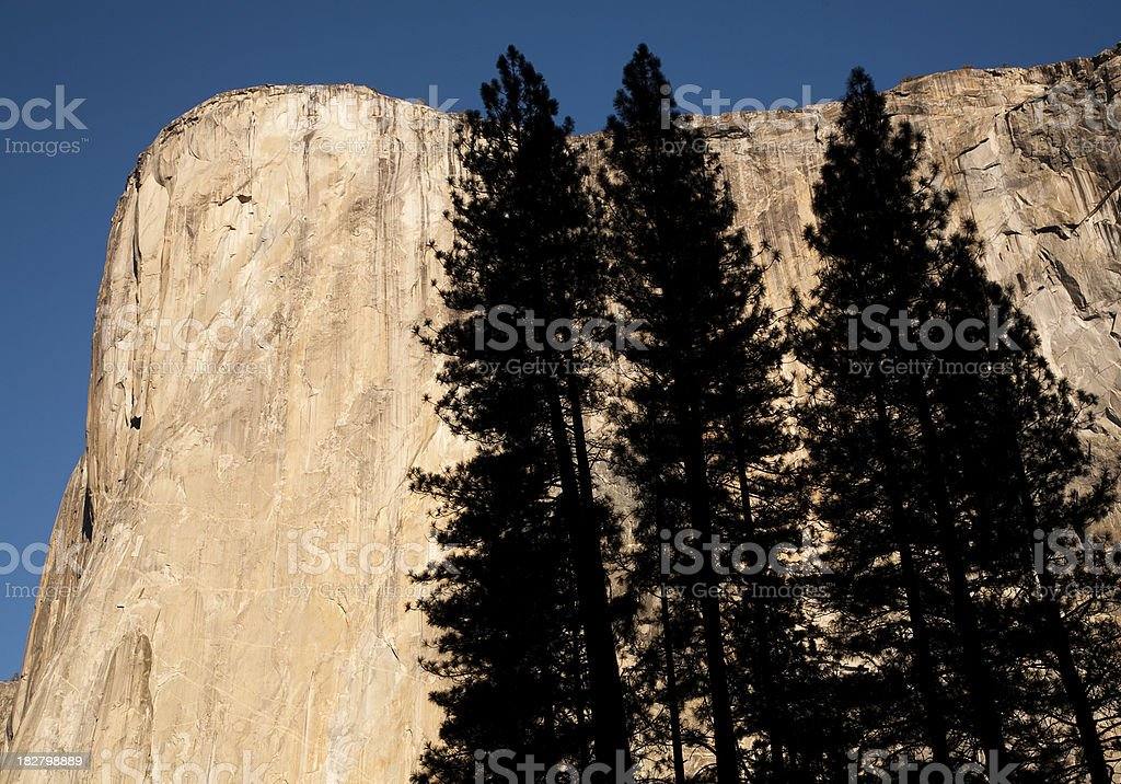 El Capitan with Tree Silhouettes royalty-free stock photo