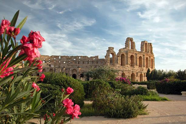 el djem coliseum, tunesien - urlaub in tunesien stock-fotos und bilder