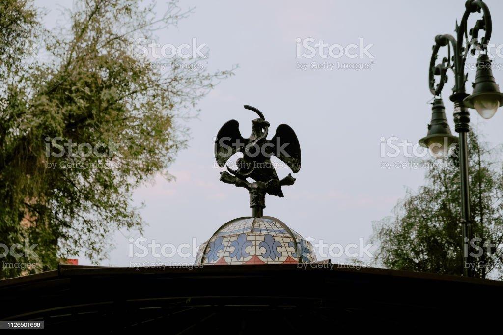 El águila y la serpiente - foto de stock
