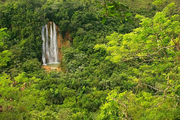 El Limon waterfall, Dominican Republic El Limon waterfall, Dominican RepublicEl Limon waterfall, Dominican Republic limoen stock pictures, royalty-free photos & images