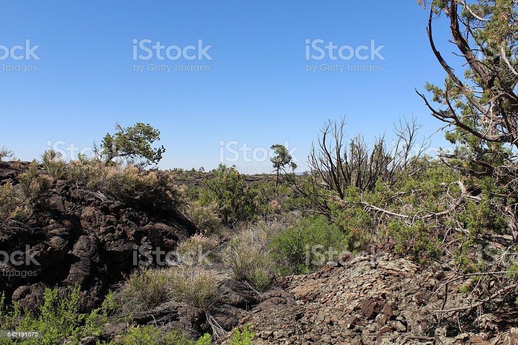 El Malpais Lava Field stock photo