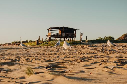 El Maviri Beach