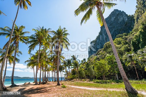 El Nido, Palawan, Philippines. Palm trees on tropical beach with rock cliffs in background. Island hopping boat wait in blue ocean water.