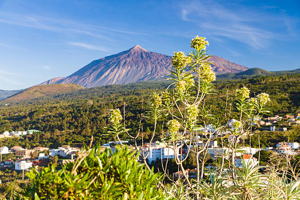 El Teide Vulkan von Mirador Lomo Molino, Teneriffa – Foto