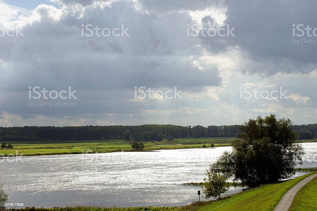 Elbe against the light stock photo