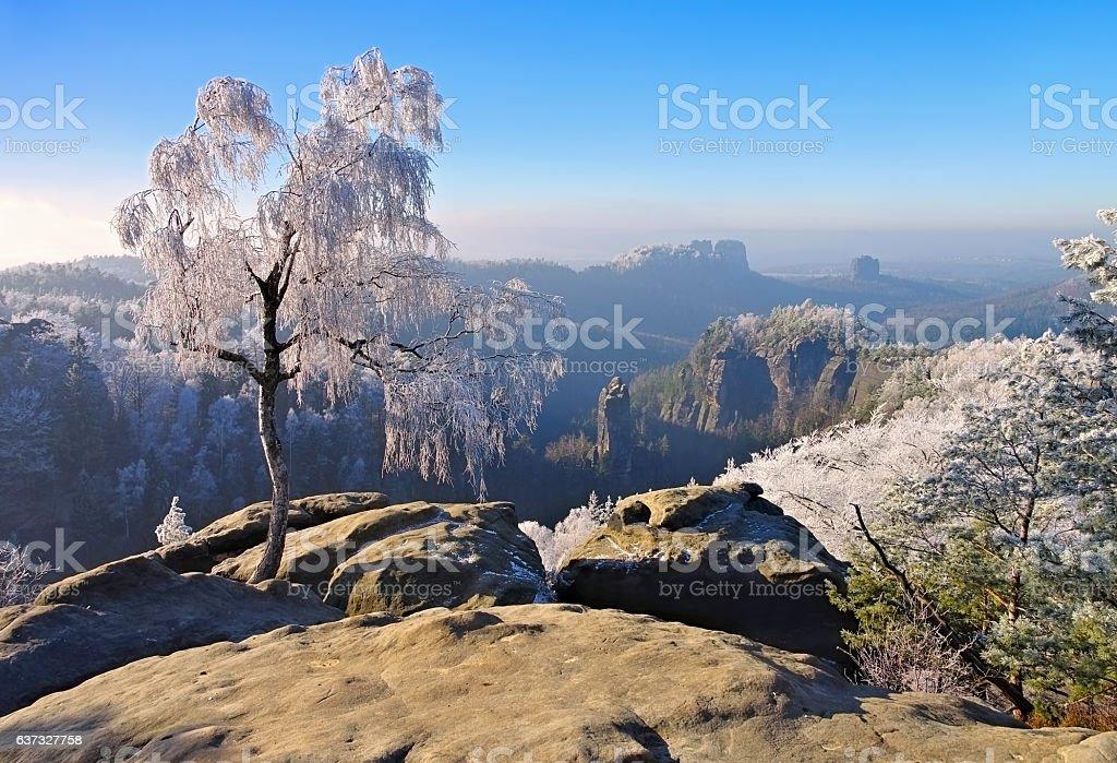 Elbe sandstone mountains in winter stock photo