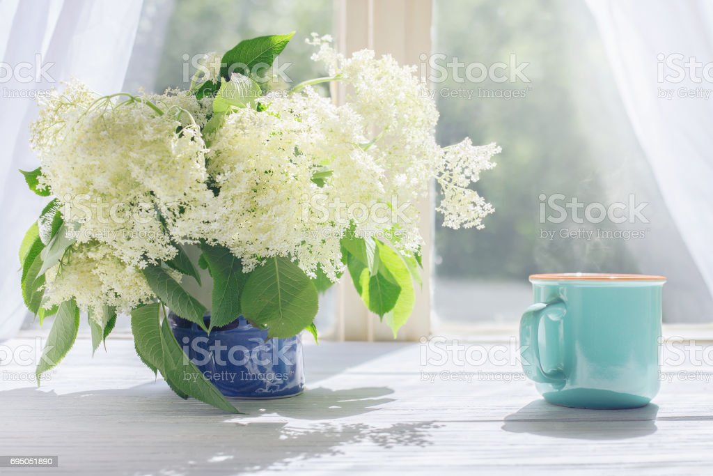 Elder flowers and cup of hot coffee by the sunlight window