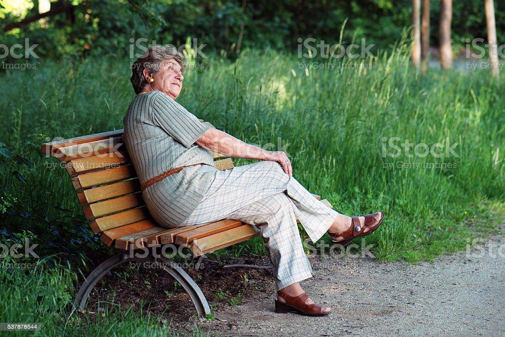elder retiree on bench stock photo