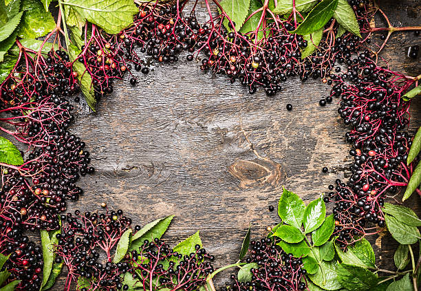 Elderberries with leaves on rustic wooden background, top view,frame stock photo